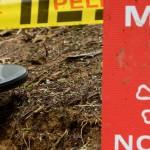 landmine_f_eltiempo