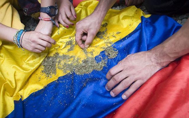 Colombia-MedicalMarijuana_1