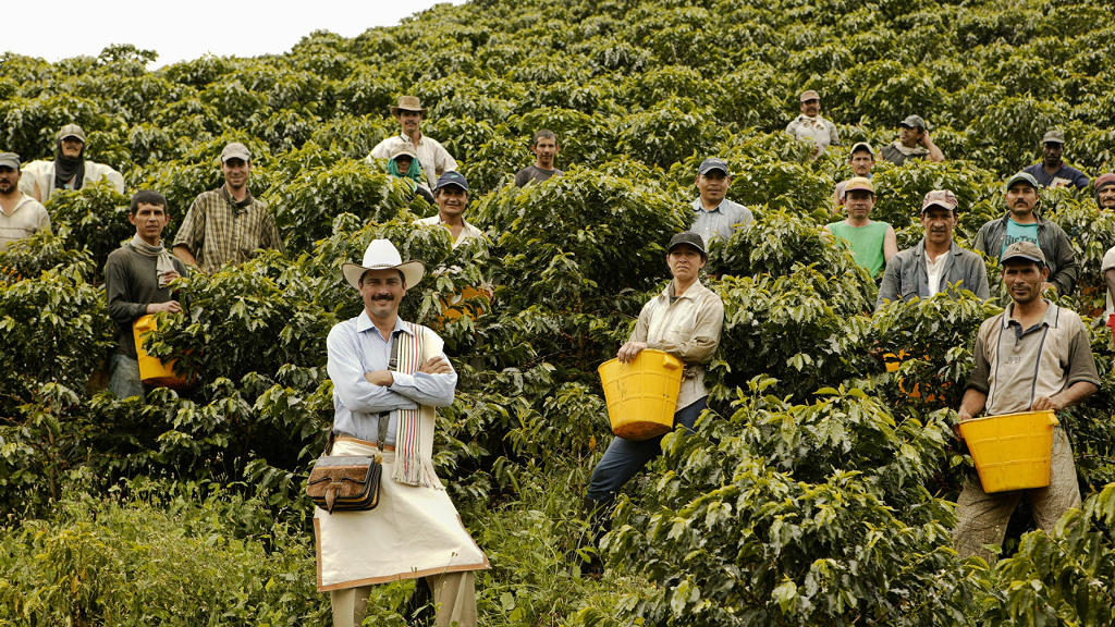 Colombia Plans to Increase Coffee Production