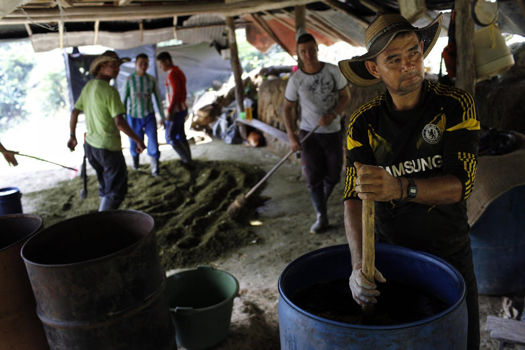 Over one in 10 Colombians are allegedly involved in illegal activities. In this January 7, 2016, photo, a Colombian farmer stirs a mix of mulched coca leaves and cement with gasoline, as part of the initial process to make coca paste, at a small lab in Antioquia, Colombia.AP Photo/Rodrigo Abd